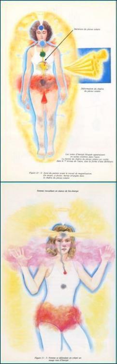 19a1dab0a76aea28f84b5176f4797f60--body-anatomy-chakras.jpg